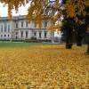 Un progetto sociale per garantire la pulizia del parco di Villa Mazzotti